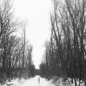 Trail 001-2015